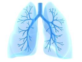 Tuberkulozes diena_2015