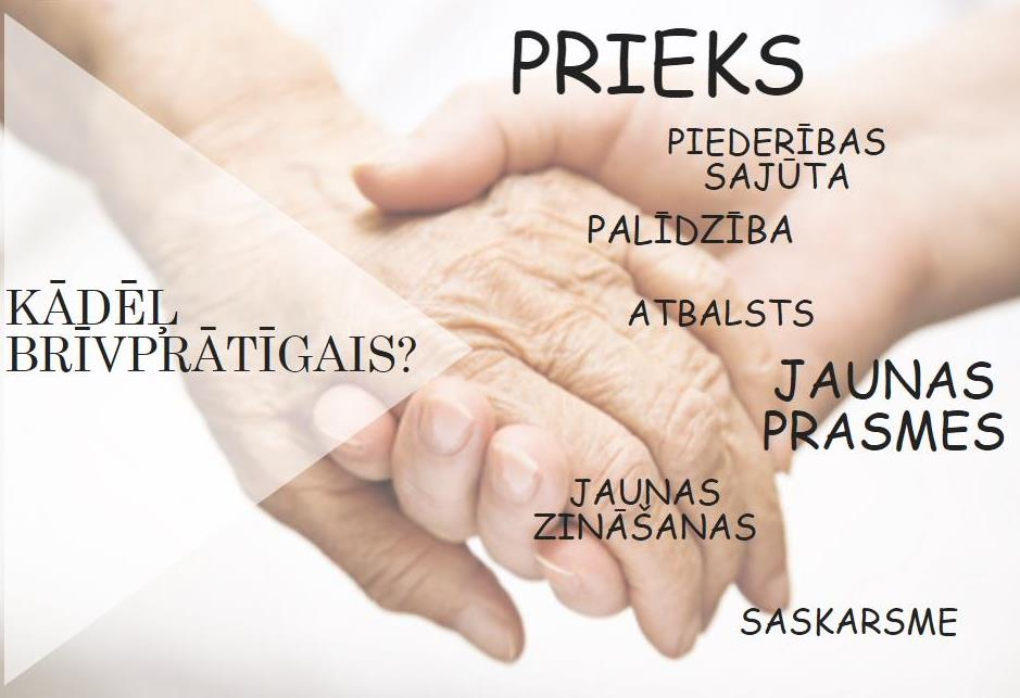 Busim aktivi_grafika 2